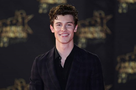 Número do Shawn Mendes 2020